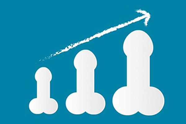 Penis growth timeline